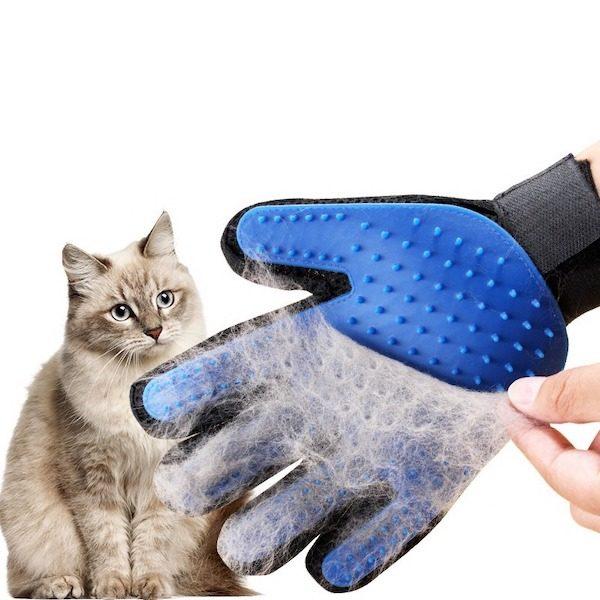 gant de toilettage chat et chien le meilleur de